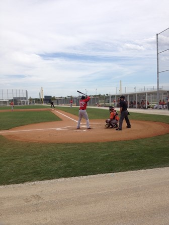 Xander Bogaerts at the plate