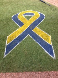 Painted ribbons for OneFundBoston.org